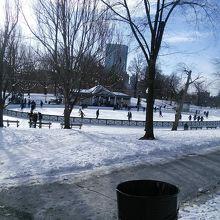 ボストン中心部の公園