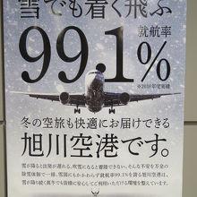 雪でも着く飛ぶ就航率99.1%