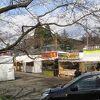 武家屋敷と枝垂れ桜のコントラスト