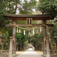 長い参道があるキレイな神社