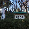 写真:上野大仏とパゴダ