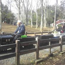 冬枯れの世田谷公園