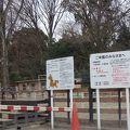 写真:代々木ポニー公園