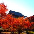 写真:東寺 講堂の立体曼荼羅
