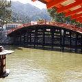 写真:嚴島神社 反橋