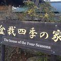 写真:さいたま市盆栽四季の家