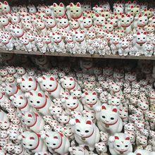 招き猫がいっぱい