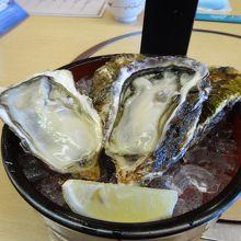 広島駅ビルで名物牡蠣三昧