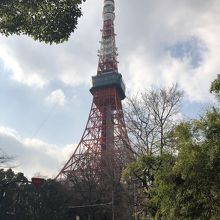 増上寺からの歩道からみたタワー