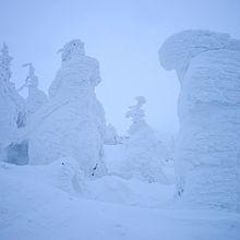 より大きな樹氷を見るなら山形蔵王!夕方のライトアップは見どころ!