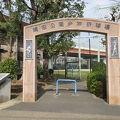 写真:隅田公園少年野球場