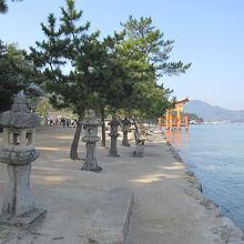 石鳥居を過ぎた御笠浜付近の景色