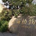 写真:上海動物園