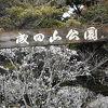 成田山新勝寺境内を進むと