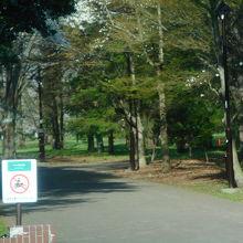 住宅地の中の広大な公園でした。