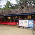 写真:岡山後楽園 福田茶屋