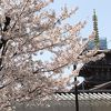 聖徳太子が創建したとされる、大阪を代表する寺