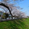 写真:旧茨城県庁 (三の丸庁舎)