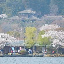 千波湖畔から見る偕楽園好文亭