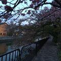 写真:琵琶湖疏水