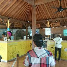 象に乗れる動物園