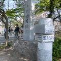 写真:福岡城跡