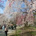 写真:舞鶴公園
