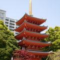 写真:東長寺 五重塔
