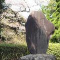 写真:佐久間象山顕彰碑