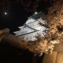 今回1番インスタ映えするのがコレ。夜桜、大阪城、満月!