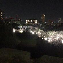 1番上の石垣から見る大阪市の夜景