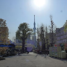 浅草寺境内から見える東京スカイツリー