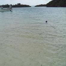 浜辺からの景色
