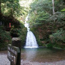 自然がいっぱいの阿寺の七滝