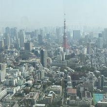 東京の景色が良く見える