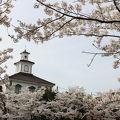 写真:鶴岡公園・鶴ヶ岡城跡