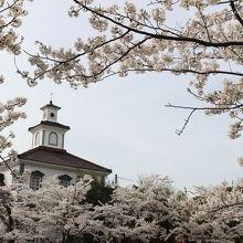鶴岡公園の桜の風景で登場する建物はここでした