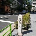 写真:江戸桜通り