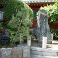 写真:神田明神 銭形平次の碑