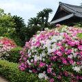 写真:披雲閣(旧松平家高松別邸)