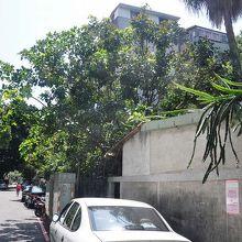 巨木が多く残り、暑い日でも木陰を気持ちよく歩ける。旧日本住宅を改造したレストランもあった