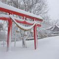 写真:日本製紙釧路工場