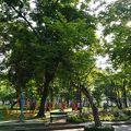 写真:ルンピニー公園