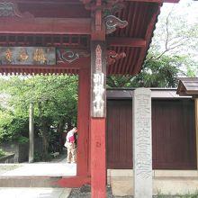 浄土庭園が美しい称名寺