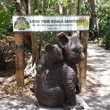 コアラ抱っこし写真とれます