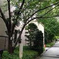 写真:関西学院大学