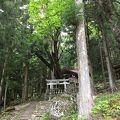 写真:信濃比叡園原の里