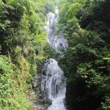森の中でマイナスイオンを浴びれる滝