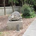 写真:乃木神社 さざれ石