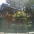 写真:清荒神清澄寺 荒神影向の榊